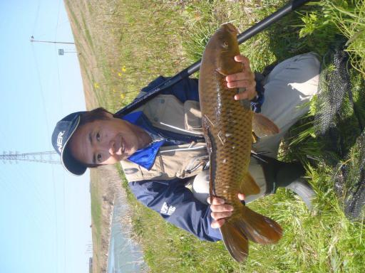 今年初の鯉釣り。