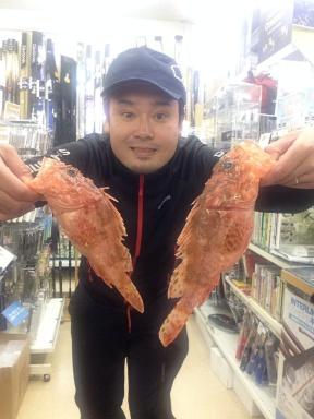 福田海豊丸さんにてオニカサゴ