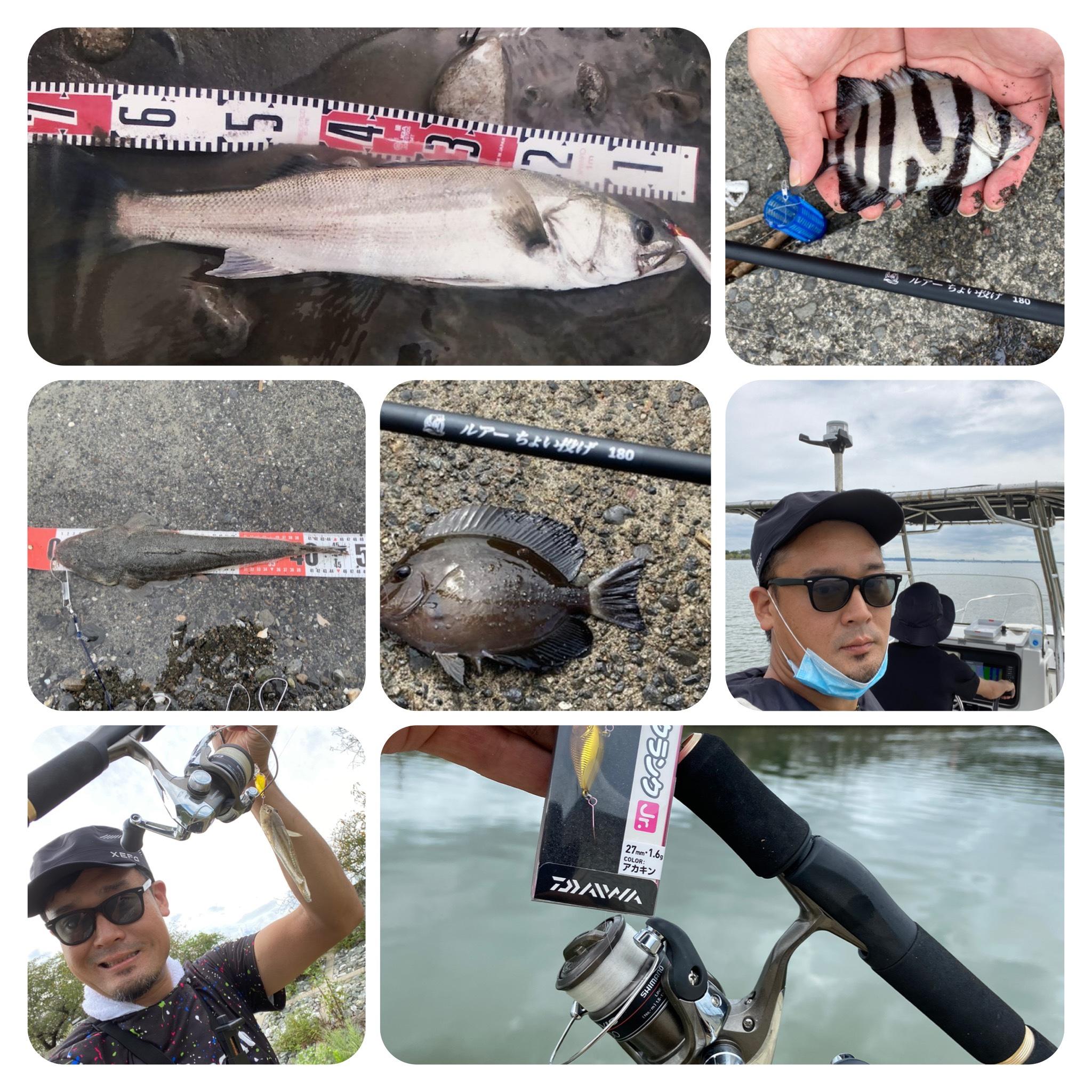 【今週の釣り情報】