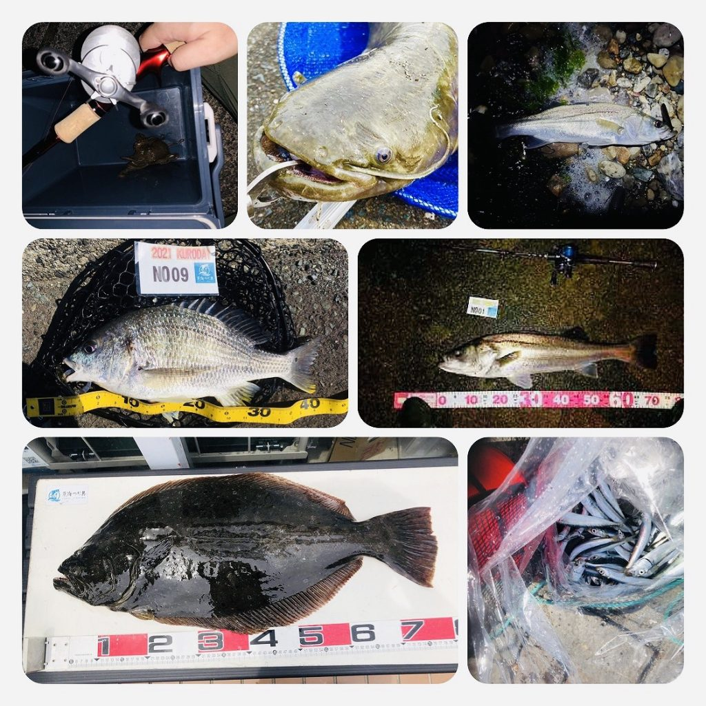 【釣果情報】今週の釣果情報