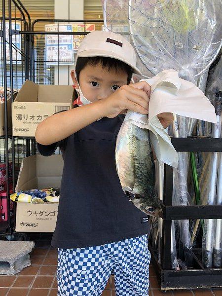 【夏休みイベント/釣れたよスタンプ】沖釣りでアジが釣れたよ